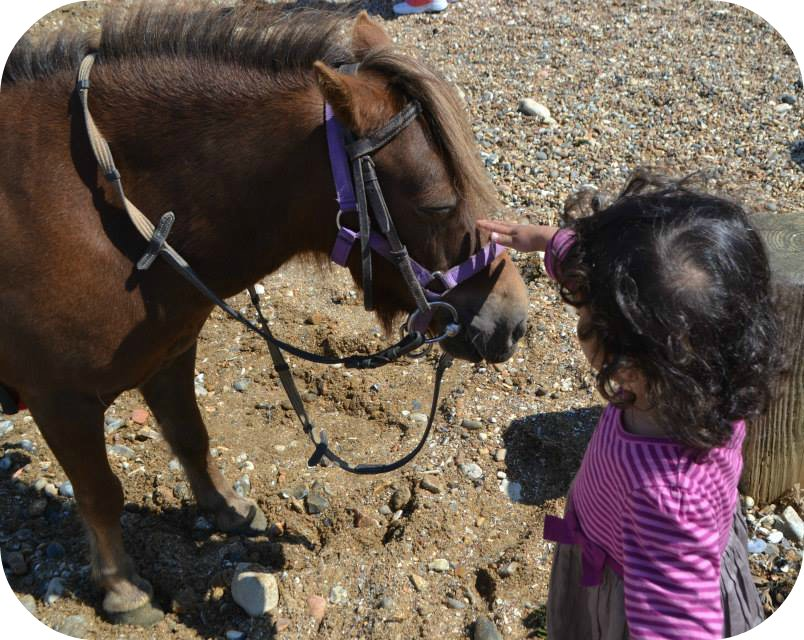 Pony at Hunstanton