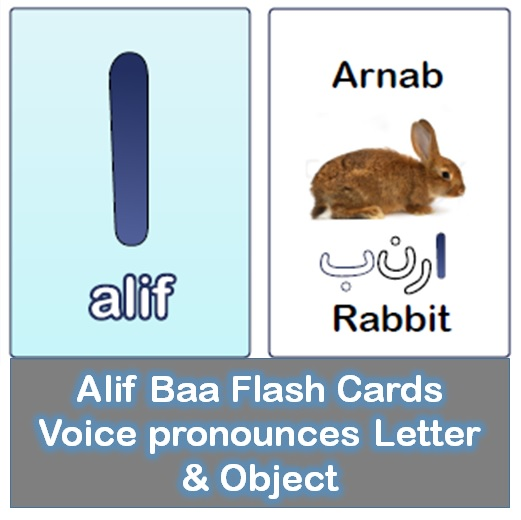 App Flash Cards Promo 1