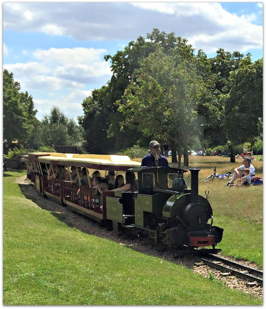 Train at Ferry Meadows