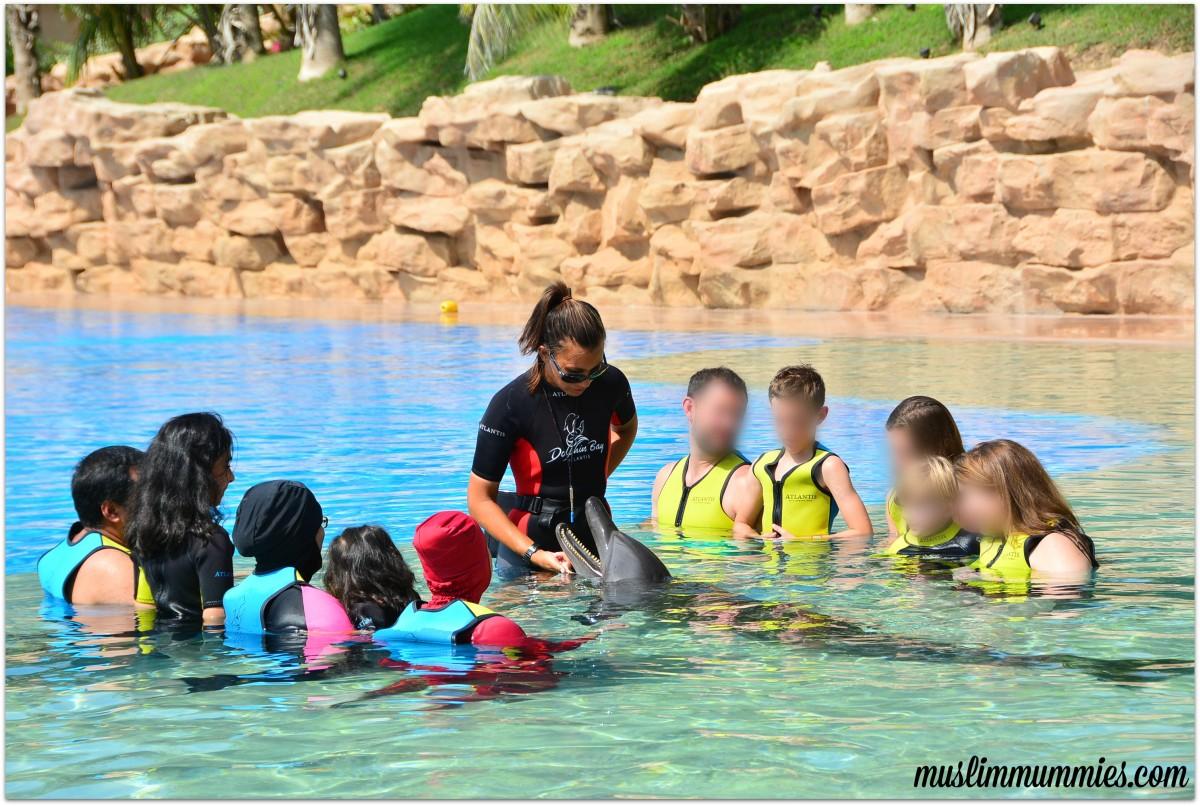 Dolphin Bay Atlantis experience