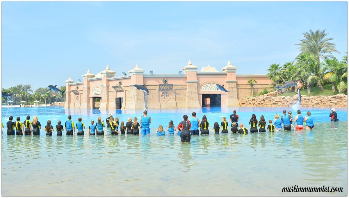 Dolphin Bay Atlantis finale