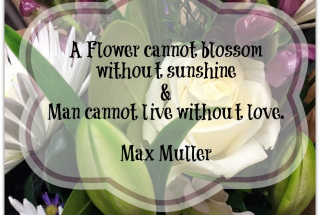 A flower cannot blossom without sunshine