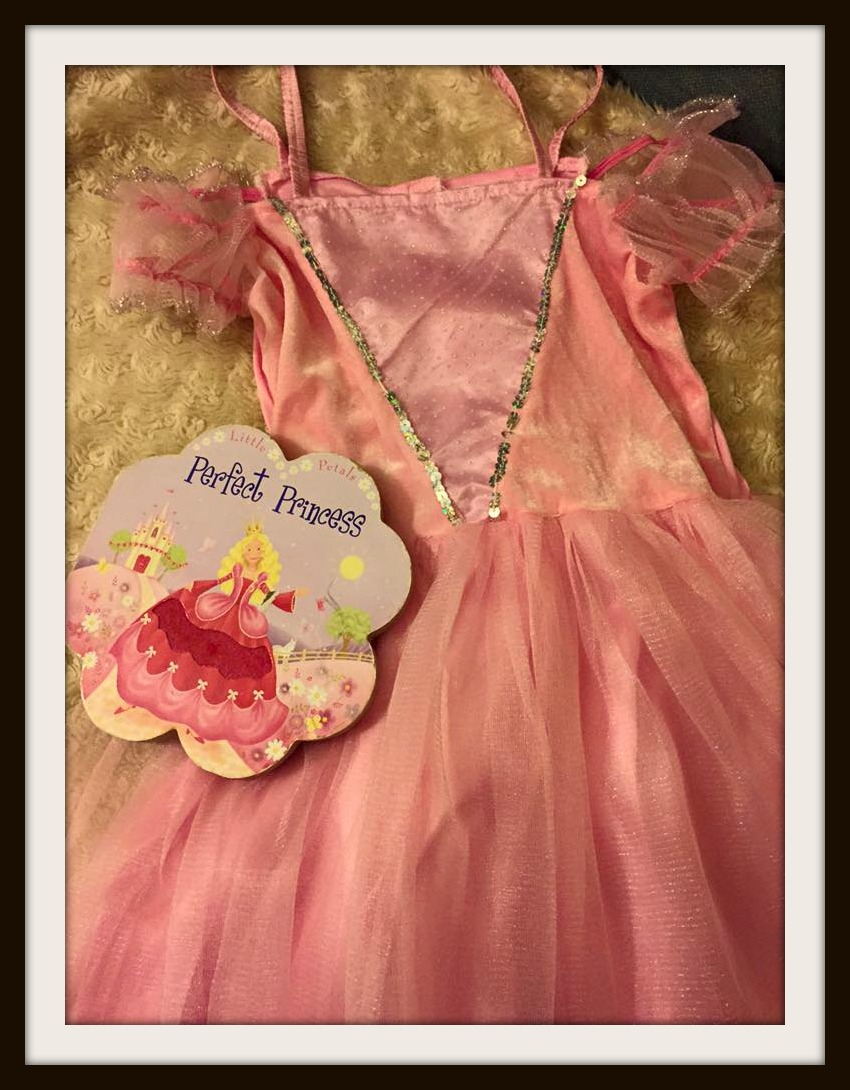 Princess Dress World Book Day