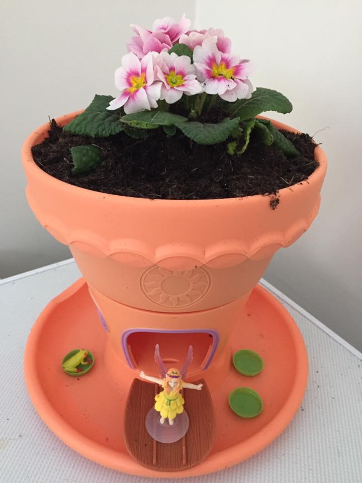 Lilypad Garden planted