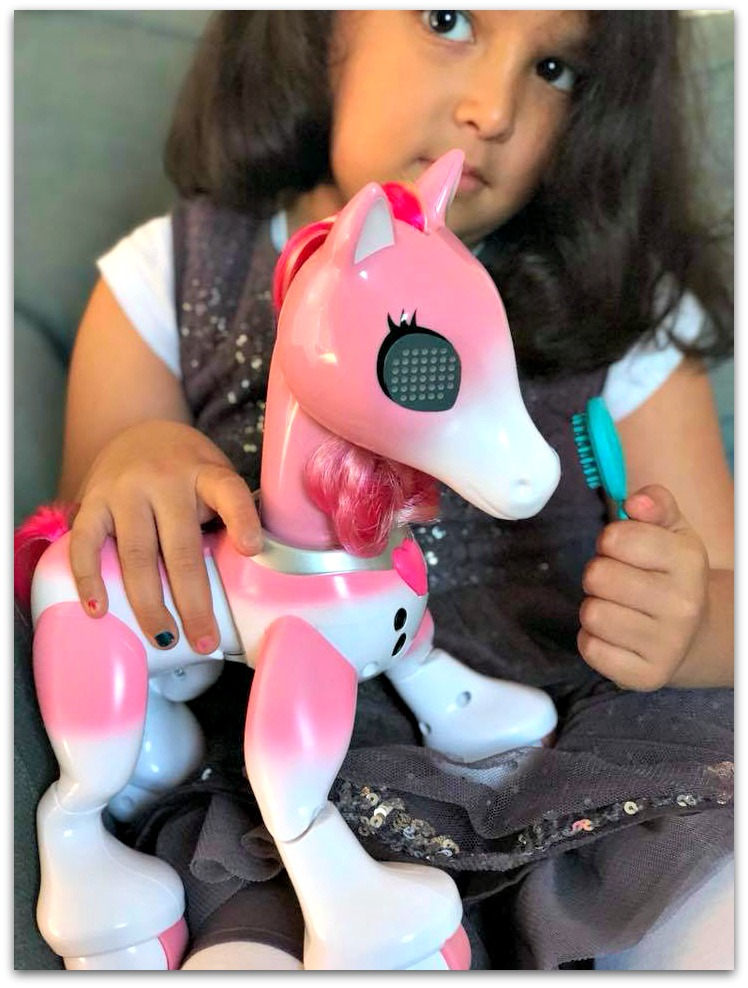 Playing with Zoomer Show Pony