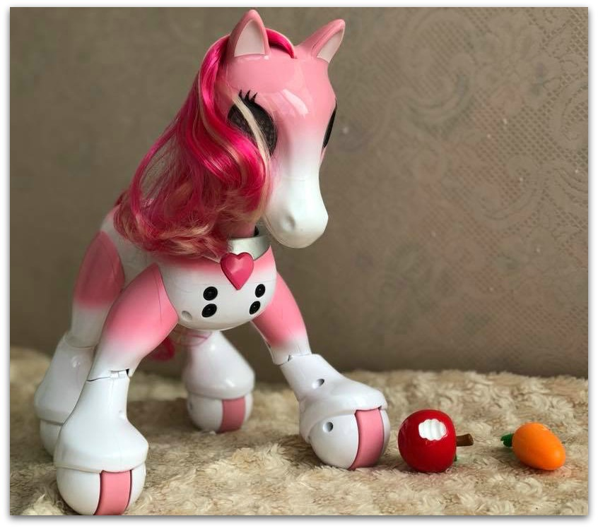 Zoomer Show Pony