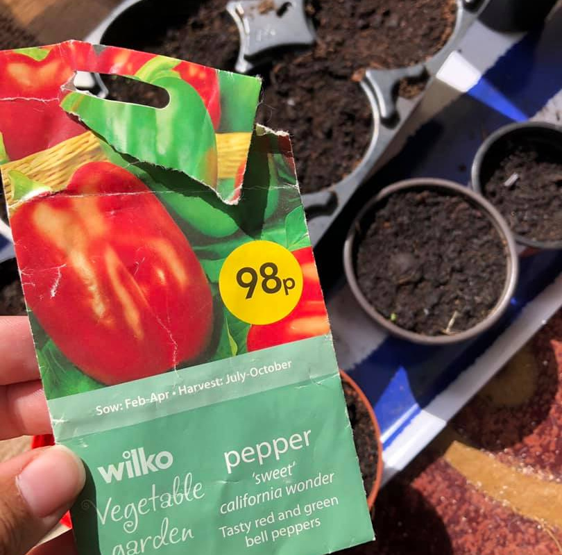 Showing a packet of pepper seeds